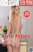 Toy For Pleasure